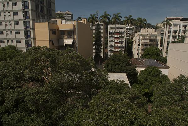 urban-nature-2
